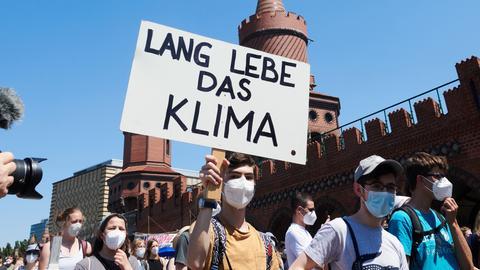 FFF-Demo in Berlin (dpa)