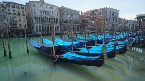 Gondeln in Venedig (dpa)