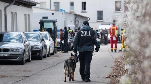 Ein Hundeführer vom Zoll geht über ein Gelände in Lichtenberg. (dpa)