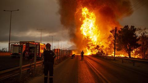 Feuerwehrleute bekämpfen einen Waldbrand in einem Waldgebiet nördlich von Athen. (dpa)