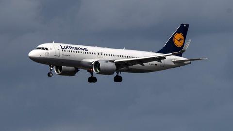 Maschine der Fluggesellschaft Lufthansa im Landeanflug (dpa)