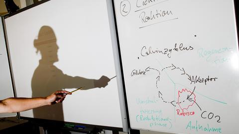 Ein Lehrer wirft einen Schatten auf ein Smartboard im Biologie-Leistungskurs einer Integrierten Gesamtschule.  (dpa)