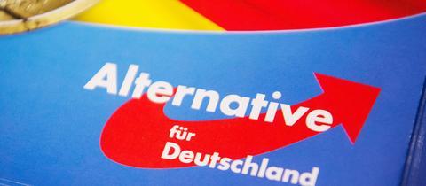 Das Logo der Alternative für Deutschland (AfD). (dpa)