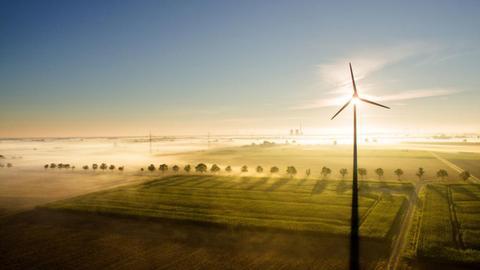 Ein Windrad steht auf einem von Nebel überzogenen Feld. ()