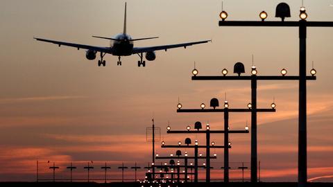 Ein Flugzeug im Landeanflug (dpa)