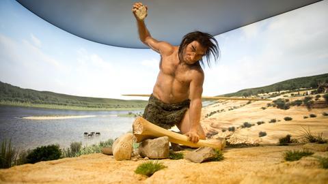 Zeichnung Homo Heidelbergensis