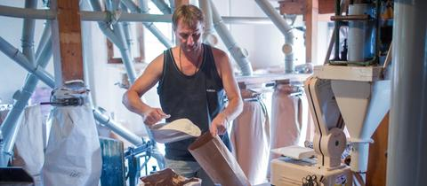 Müller Ralf Clauder füllt in der historischen Clauder Mühle frisch gemahlenes Mehl in Papiertüten ab.