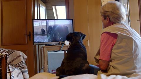 Frau mit Hund vor Fernseher
