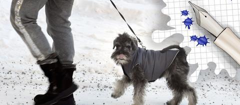 Frau geht mit Hund im Schnee spazieren