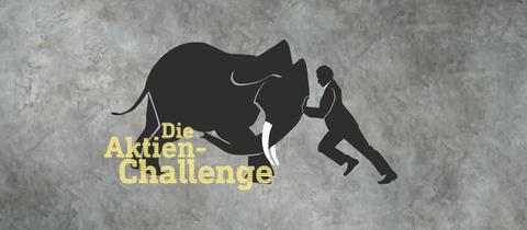 """ARD-Aktienchallenge"" - Elefant gegen Chefanalyst"