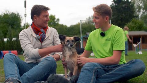 Dieter Voss (li.), Hündin Gina und Robin Zink