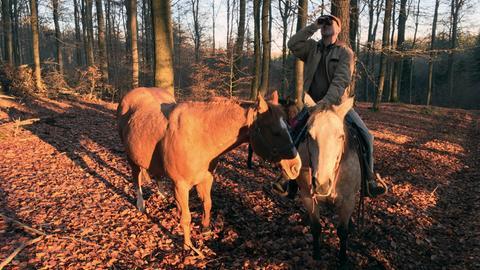 Vogelförster Michael Hoffmann ist unterwegs im Burgwald