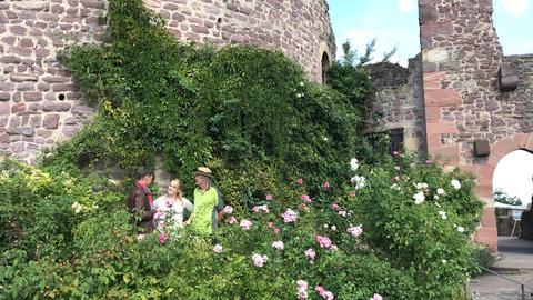 Dieter Voss mit den Gärtnern Lisa-Marie Schmandt und James Kelly vor der Burg Hayn in Dreieichenhain.