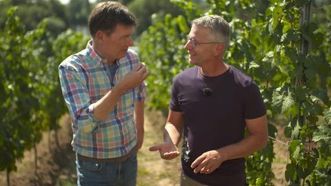 Dieter Voss (links) mit Winzer Reiner Flick, er baut den Königin-Viktoriaberg-Riesling an, der auch im englischen Königshaus gern getrunken wird