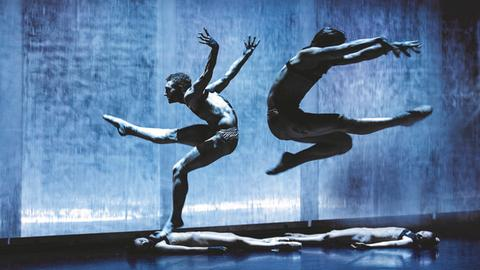 Dresden Frankfurt Dance Company - When the dust settles