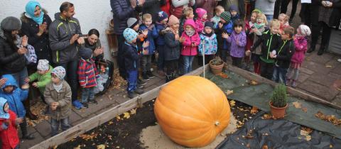 """Die Kinder freuen sich mit ihren Eltern und Erziehern des Kindergartens Friedrichstal in Bad Orb über den Sieg bei der """"hr3-Kürbiswette""""."""