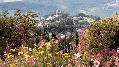 Blick auf Burg Reifenberg im Taunus