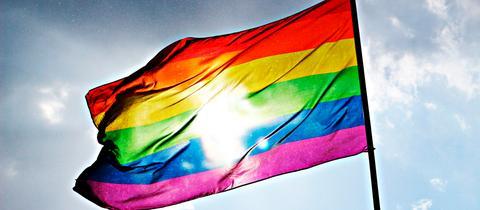 Regenbogenfahne, CSD