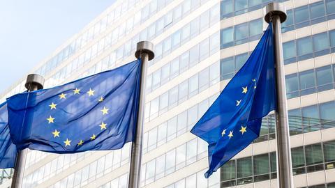 Andreas Meyer-Feist über die Europawahlen