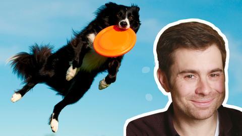 hr-Regionalreporter Roman Warschauer Collage mit Hund und Frisbee