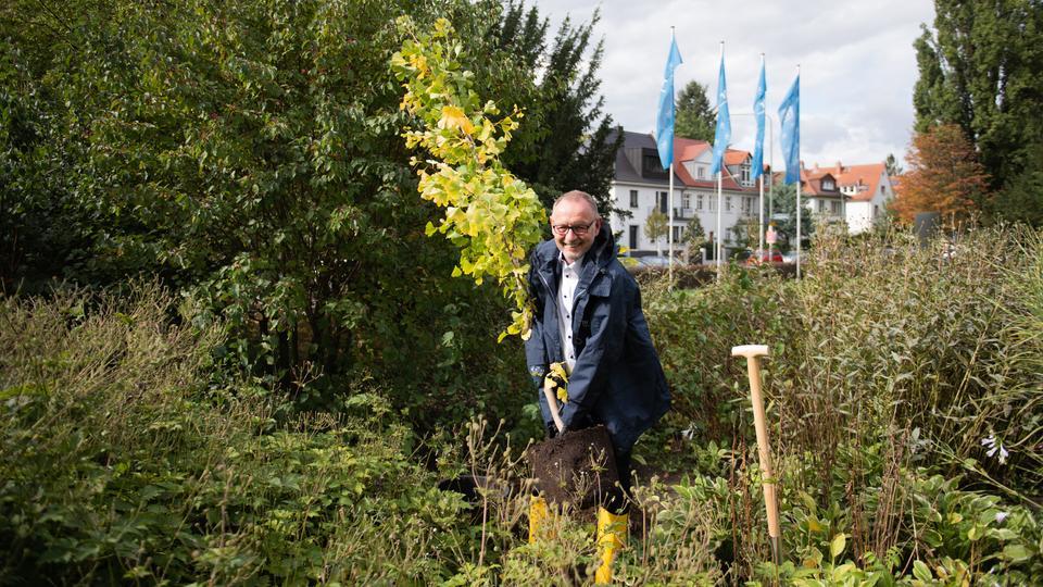 Jeder kann etwas fürs Klima tun: hr-Intendant Manfred Krupp unterstützt die Baumpflanz-Aktion #Einheitsbuddeln zum Tag der Deutschen Einheit und griff dafür selbst zum Spaten. Vor dem Funkhaus setzte er einen Ginkgo.